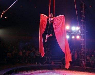 Zirkus im Koffer